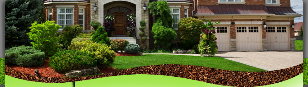 About Greenscapes Landscaping