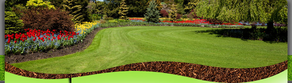 View Greenscapes Landscaping Gallery